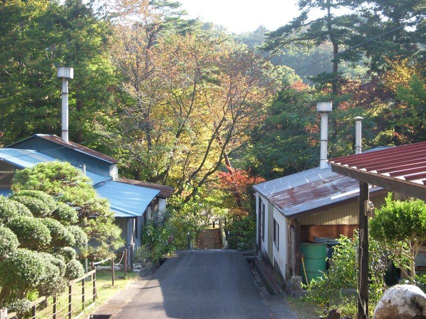 窯場の庭の紅葉